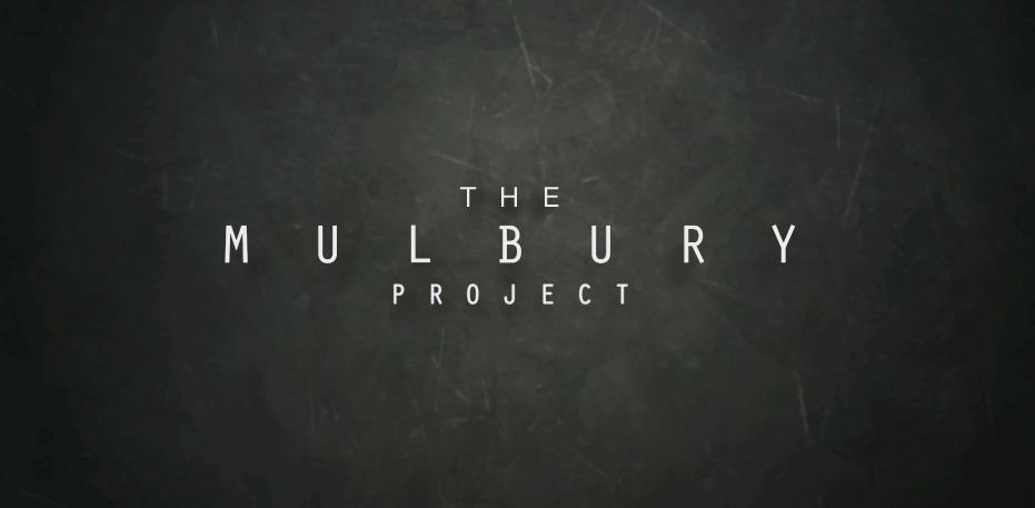 The Mulbury Project